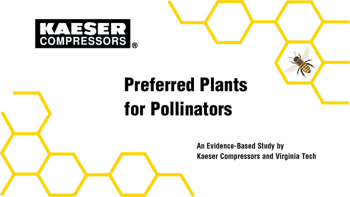 P-plants for pollinators - web