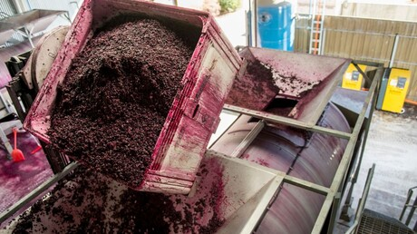 pneumatic-press-filled-teusner-wines